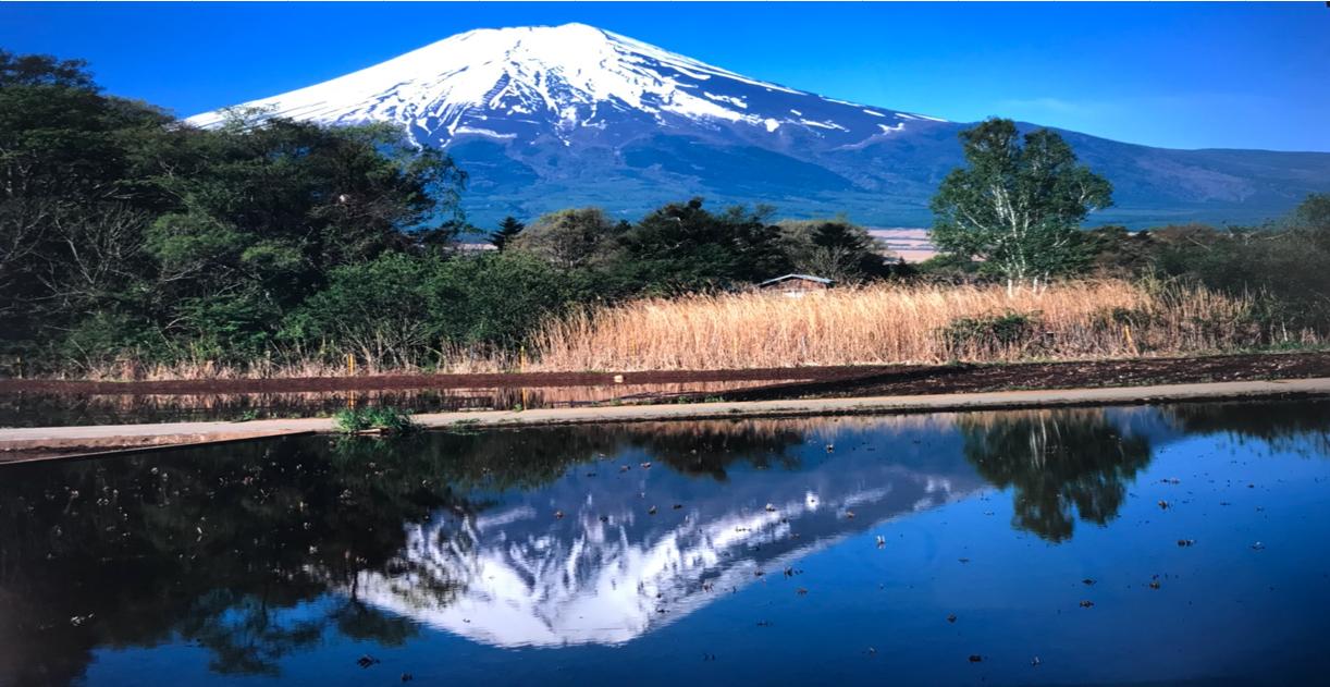 忍野村鏡富士