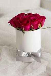 赤いバラ短くいける