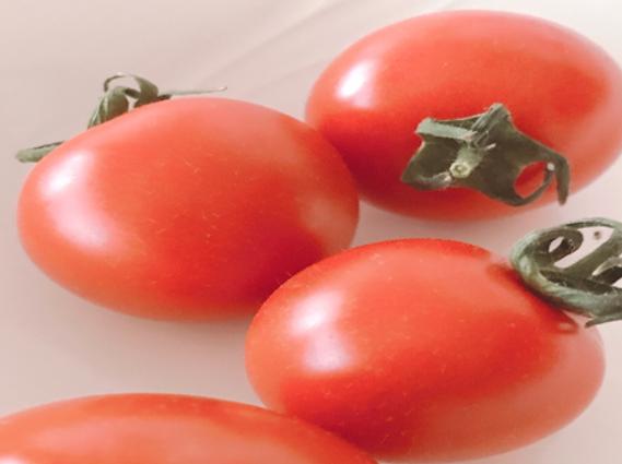 フルーツトマト・フルティカ