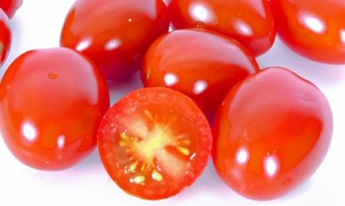 フルーツトマトアイコ沢山画像
