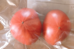 ジップロックへ入れたトマト