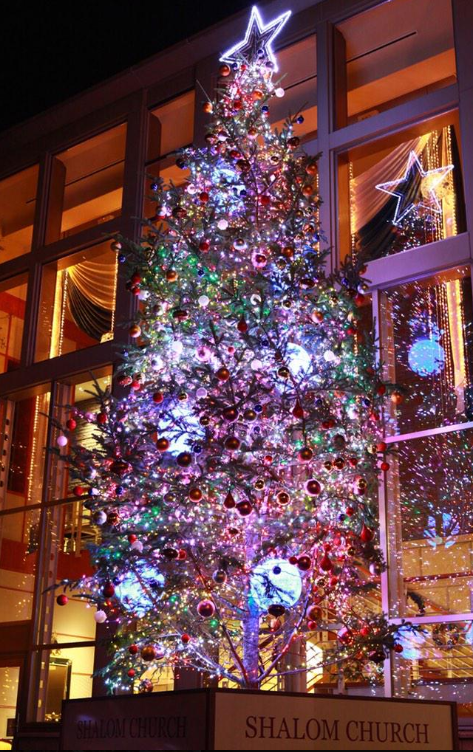 藻岩シャローム教会クリスマスツリー